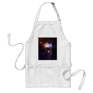 Los fuegos ocultados de la nebulosa NGC 2024 de la Delantal