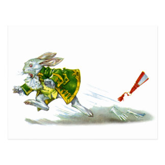 Los funcionamientos blancos del conejo lejos de Al Postal