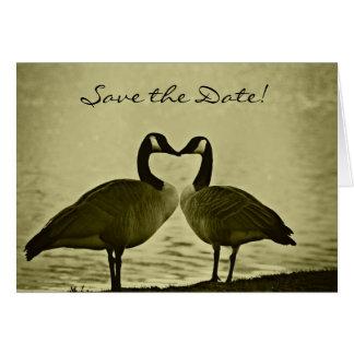 Los gansos románticos ahorran la tarjeta de fecha