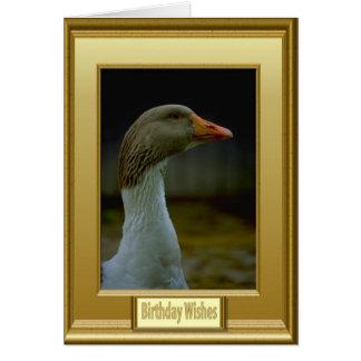 Los gansos son superiores tarjeta de felicitación