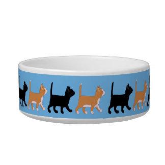 los gatitos van tazón para agua para gatos