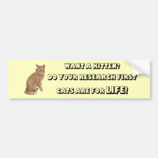 Los gatos británicos de Shorthair son para la vida Etiqueta De Parachoque