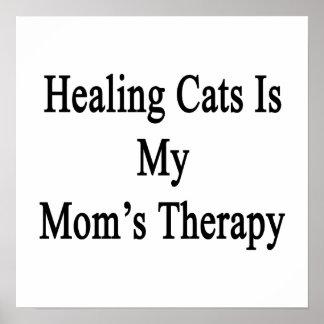 Los gatos curativos son la terapia de mi mamá poster