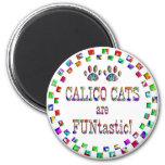Los gatos de calicó son Funtastic Imán Para Frigorífico