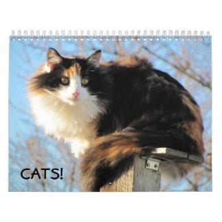 Los gatos de DJ Calendario