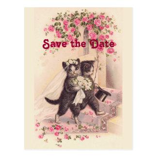 Los gatos del boda del vintage ahorran la postal d
