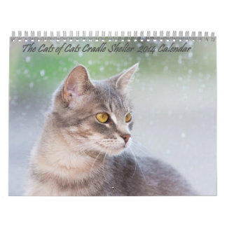 Los gatos del calendario del refugio 2014 de la cu