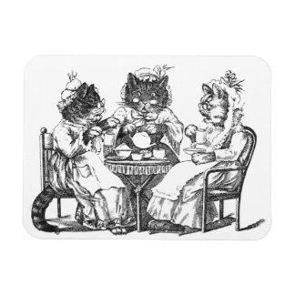Los gatos del cotilleo tienen la fiesta del té iman rectangular