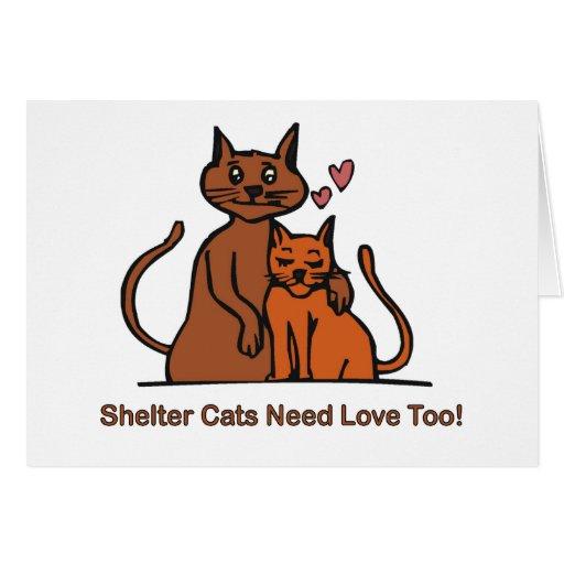 ¡Los gatos del refugio necesitan amor también! Tarjeta De Felicitación