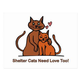 ¡Los gatos del refugio necesitan amor también Tarjeta Postal