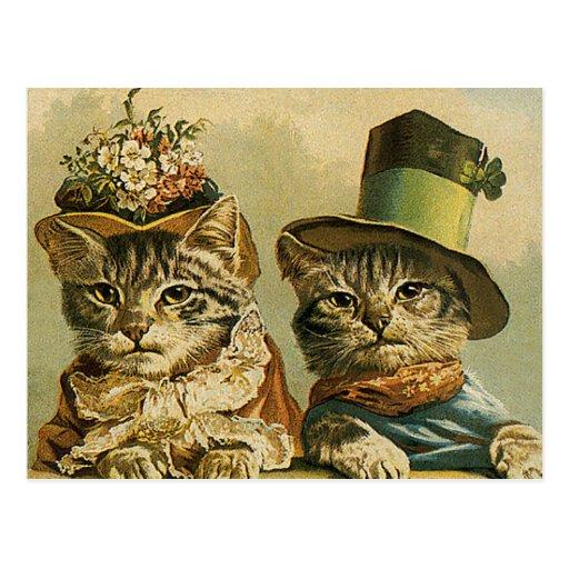 Los gatos divertidos del Victorian del vintage en  Postales