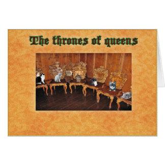 """Los gatos divertidos """"tronos de reinas"""" esconden n tarjeta pequeña"""