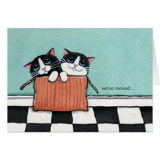 Los gatos en una caja de embalaje el | hemos movid felicitacion