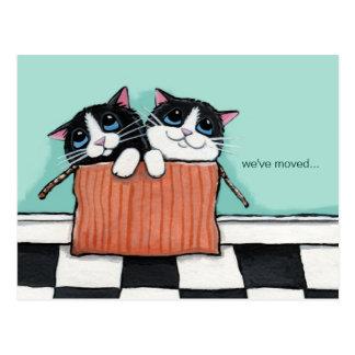 Los gatos en una caja de embalaje el | hemos movid tarjeta postal