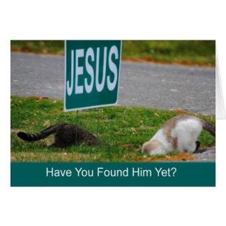 Los gatos encontraron la tarjeta divertida de Jesú
