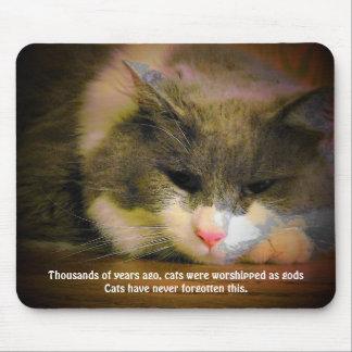 Los gatos eran adorados alfombrillas de ratones