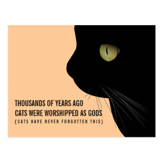 Los gatos eran adorados como postal divertida de d