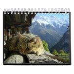 Los gatos hacen calendarios 2012