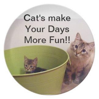 los gatos hacen sus días más placa de la diversión platos