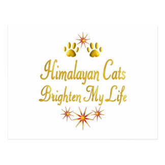 Los gatos Himalayan aclaran mi vida Postal