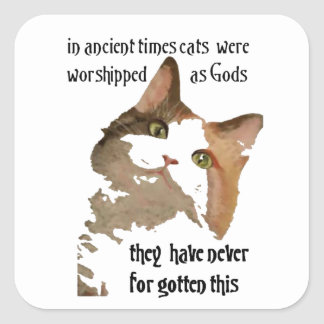 Los gatos nunca olvidan pegatina cuadrada