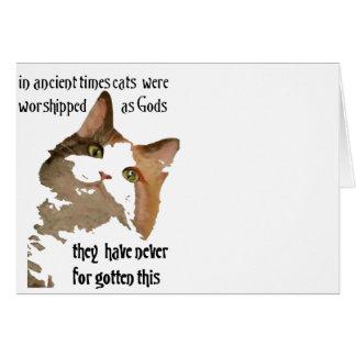 Los gatos nunca olvidan tarjeta de felicitación
