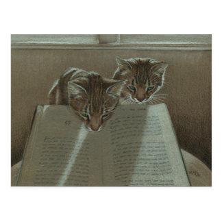 Los gatos que me ayudaban leyeron la postal del li