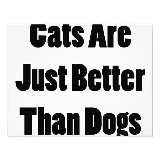Los gatos son apenas mejores que perros invitación