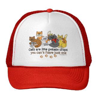 Los gatos son como las patatas fritas gorros