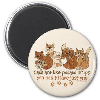 Los gatos son como las patatas fritas imán de nevera
