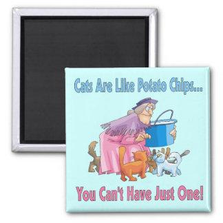 Los gatos son como las patatas fritas iman de nevera
