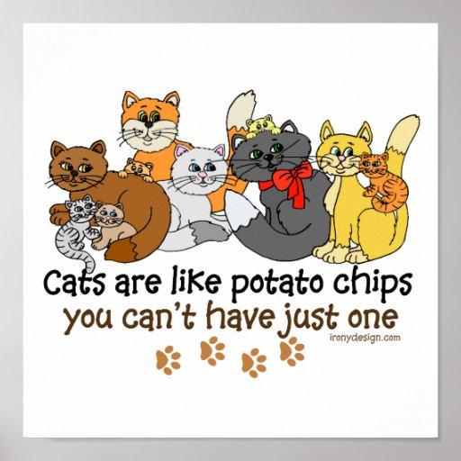 Los gatos son como las patatas fritas póster