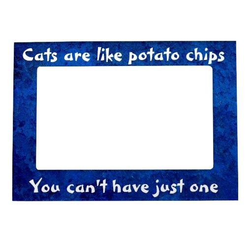 Los gatos son como marco del imán de las patatas f marcos magnéticos
