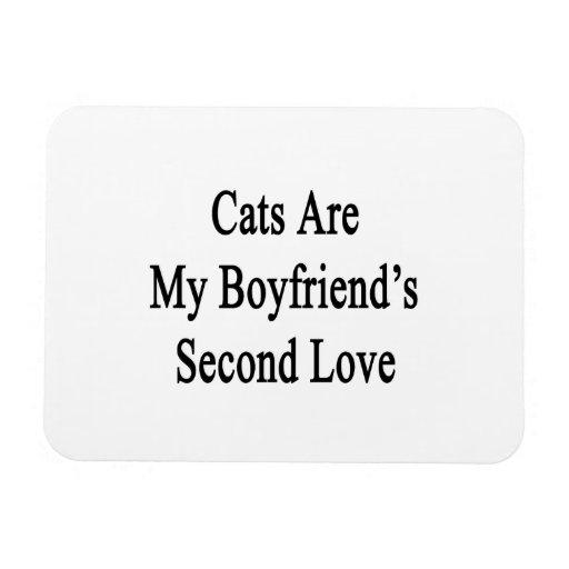 Los gatos son el amor de mi novio en segundo lugar imanes flexibles