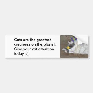 Los gatos son la pegatina para el parachoques más pegatina para coche