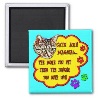 Los gatos son mágicos imán cuadrado