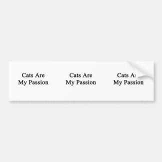Los gatos son mi pasión pegatina de parachoque