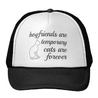 Los gatos son para siempre cita gorros