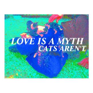 los gatos son reales postal