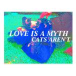 los gatos son reales tarjetas postales
