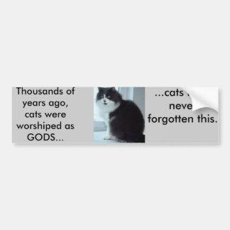 Los gatos tienen buenas memorias pegatina para auto