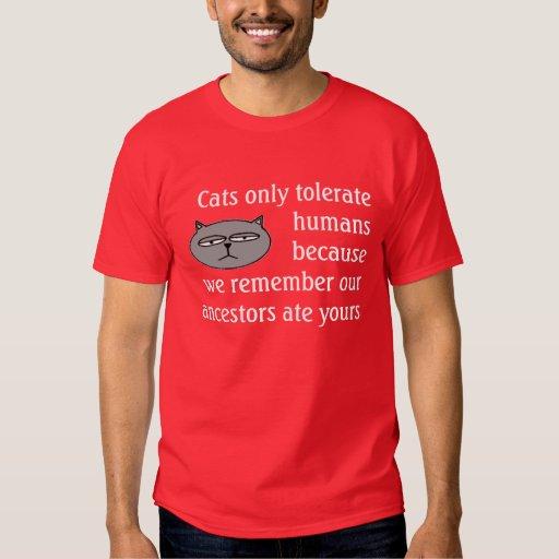 Los gatos toleran la camisa de los seres humanos