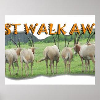 Los Gazelles africanos apenas se van Posters
