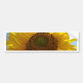 Los girasoles Sun del GIRASOL florecen a pegatinas Pegatina De Parachoque