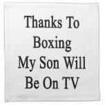 Los gracias a encajonar a mi hijo estarán en la TV Servilleta
