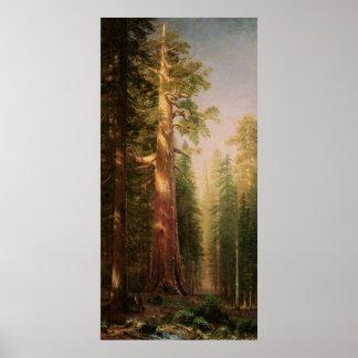 Los grandes árboles, por Albert Bierstadt Póster