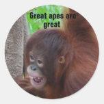 Los grandes monos son grandes etiquetas redondas