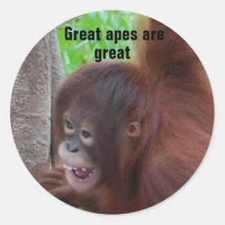 Los grandes monos son grandes pegatina redonda