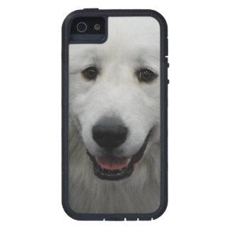 Los grandes Pirineos blancos lindos iPhone 5 Funda