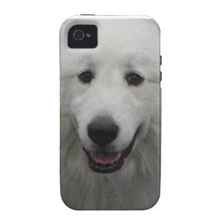 Los grandes Pirineos blancos lindos Vibe iPhone 4 Carcasas